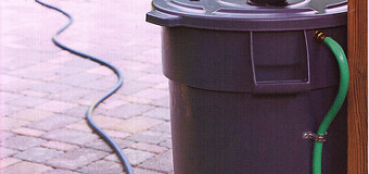 Rain Barrels: Easy & Economical