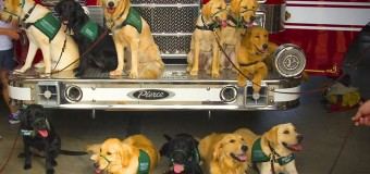 Lone Star Puppy Raisers Prepare Pups for Service