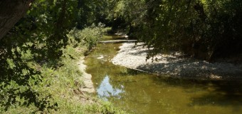 Preservation Society for Spring Creek Forest Receives Award from the City of Garland