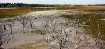 Water Conservation Backlash