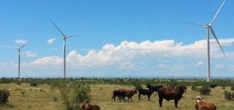 GP&L Offers 100% Renewable Power Option