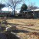 Garland Veterans garden 3