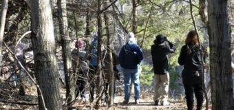Spring Creek Nature Preserve Bird Watching